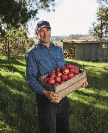 Local Apple Growers