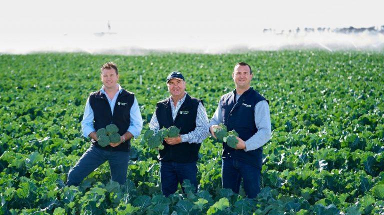Meet the Australian growers behind ALDI's fresh produce